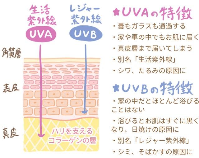紫外線の特徴
